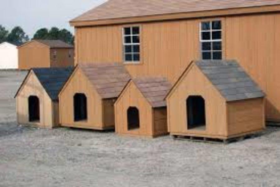 abris pour animaux archives sheds quebec west quebec. Black Bedroom Furniture Sets. Home Design Ideas
