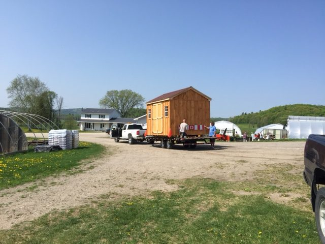 10 X 12 Gable Shed With Side Doors And Windows Canadian Build